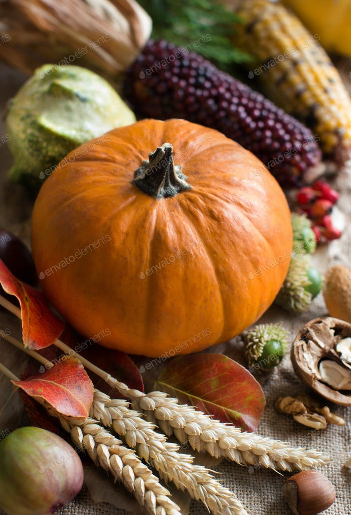 Autumn background with pumpkin