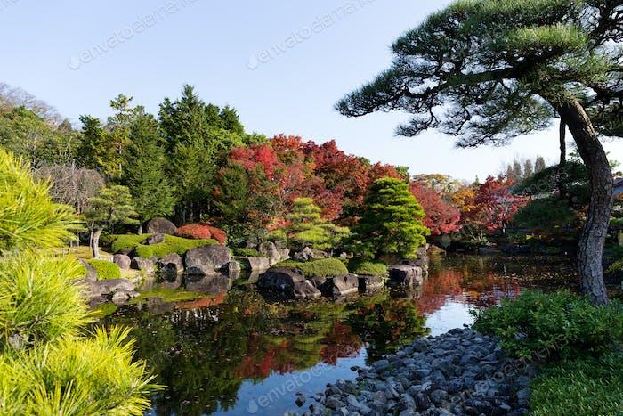 Japanischer Garten mit Herbst
