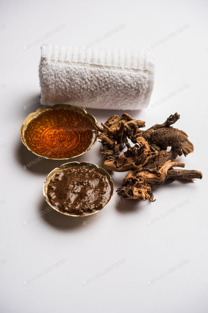 Extract of plumbago zeylanica root or Ayurvedic Chitrak