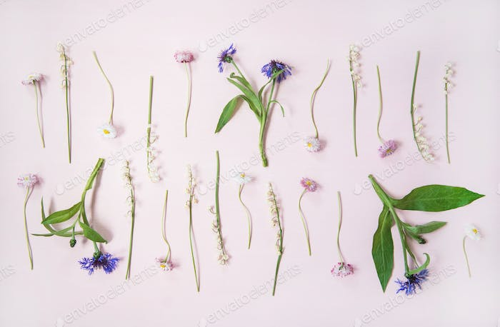 Flat-lay of lily of the valley, cornflower, daisy and peony garden flowers in rows