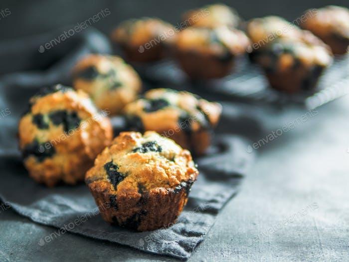 Homemade blueberry muffins on dark background