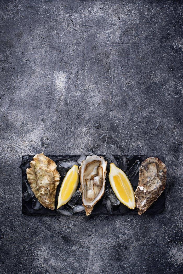 Frische Austern mit Zitrone auf dunklem Hintergrund