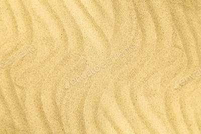 sand beach in the summer