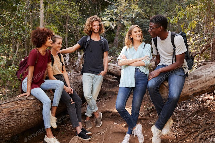 Young adult friends hiking in a forest resting on a fallen tree and talking, full length