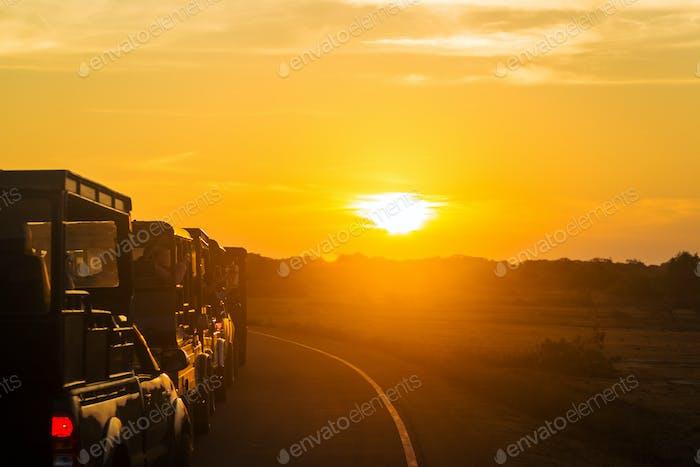Sonnenaufgang zu Beginn der Auto-Safari