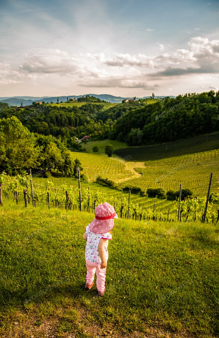 Baby looking at landscape of vineyard