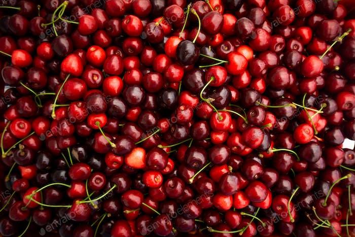 Cherry. Fresh organic berries. Fruit background