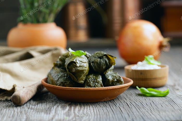 Dolma Food in Grape Leaves
