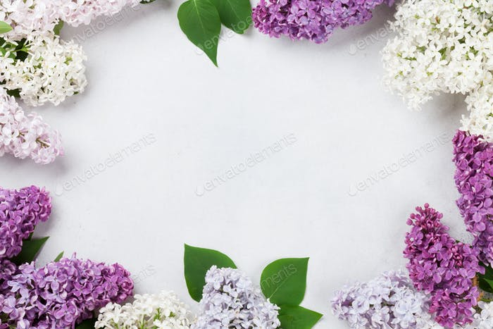 Colorful lilac flowers