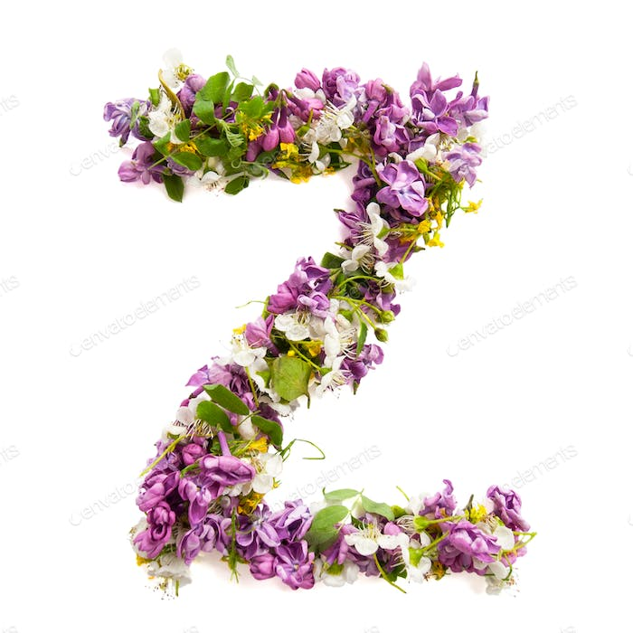 The letter «Z» made of various natural small flowers.