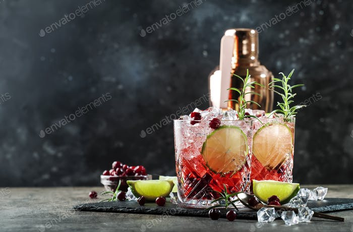 cocktail with cranberries, ice and rosemary