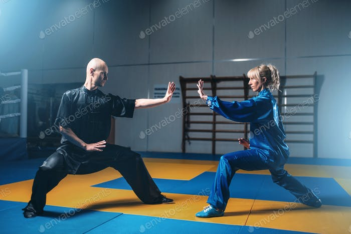 Male and female wushu fighters exercises indoor