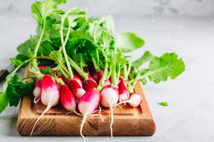 Fresh raw organic radishes with green leaves