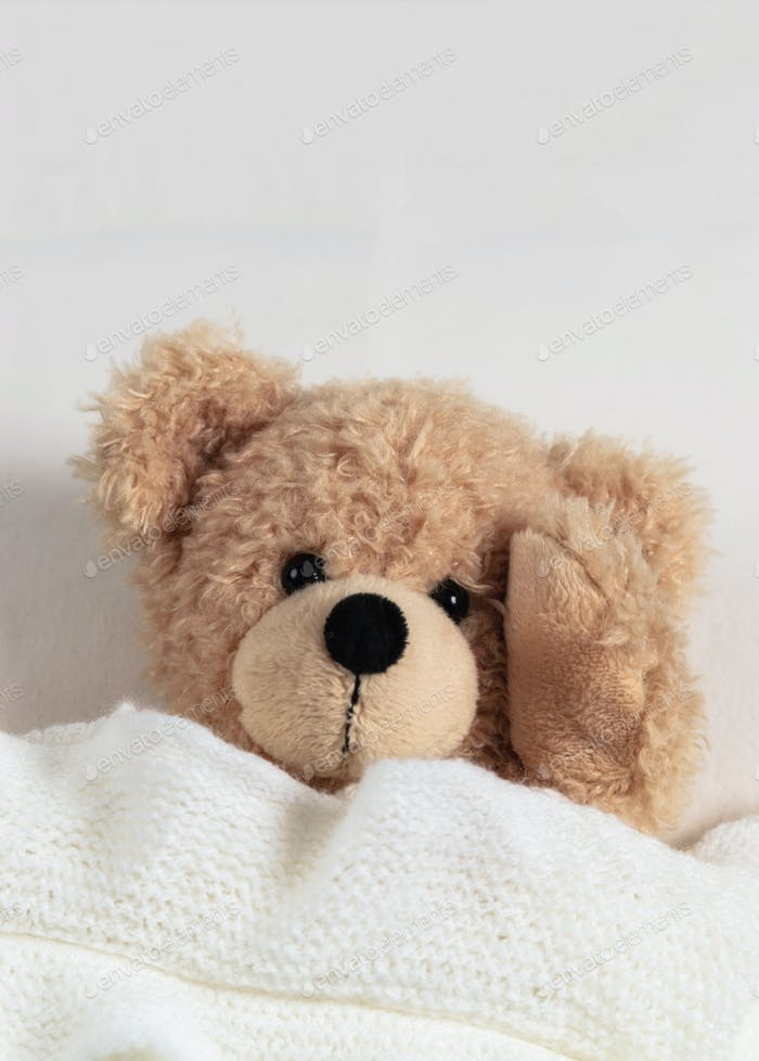 Headache, insomnia. Cute teddy ill laying in bed