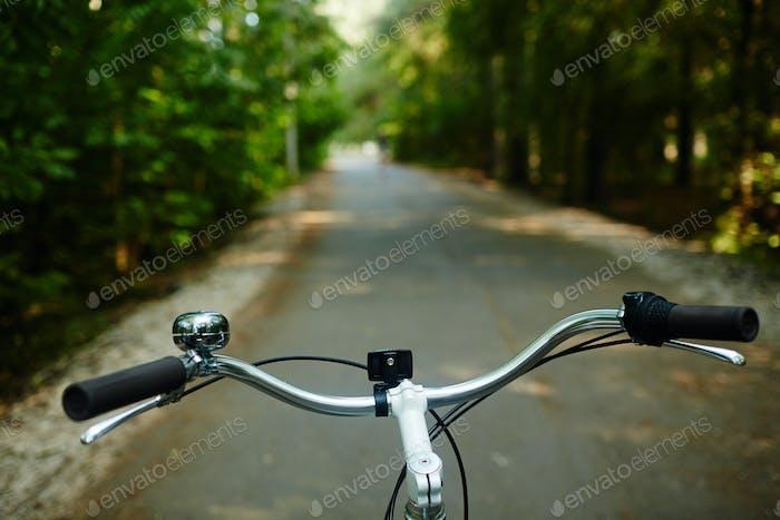 Steer of bicycle