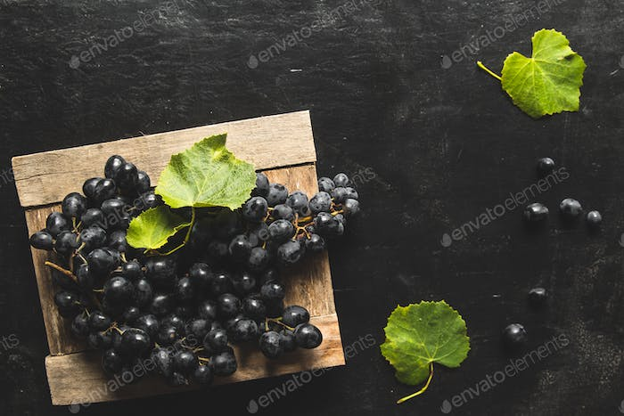 on a gray background a dark grapes in a wooden box