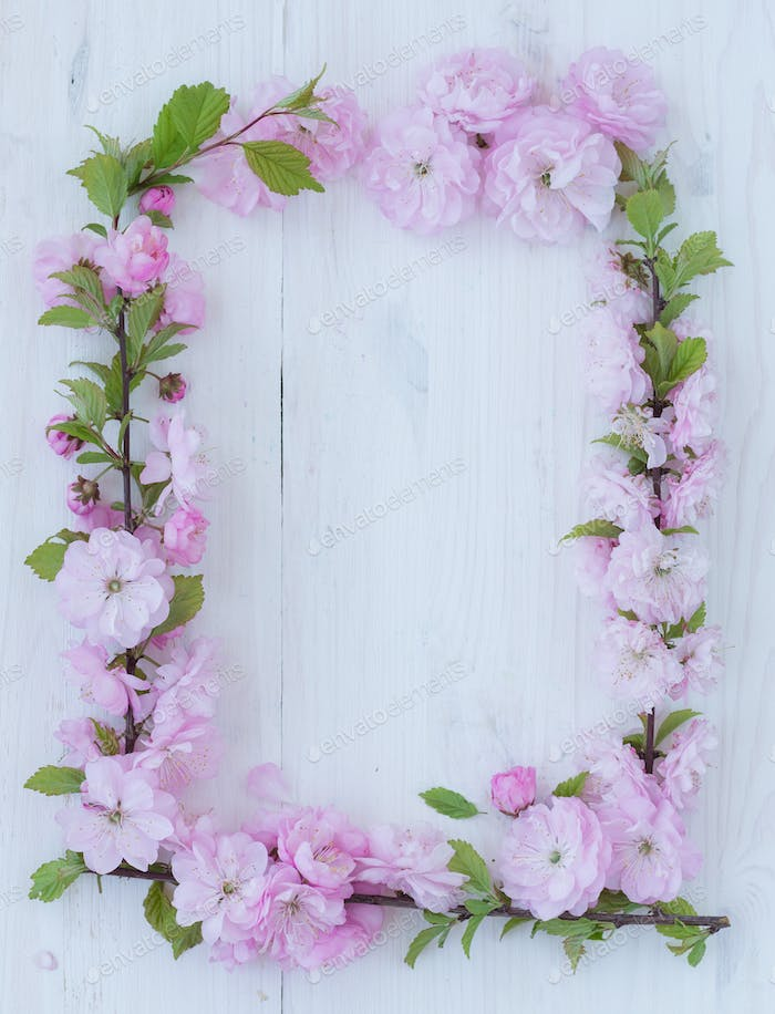 Flowers frame on white wooden