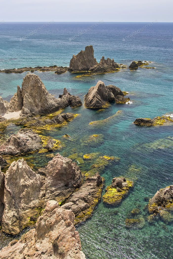 Las Sirenas Reef, Cabo de Gata Nijar Natural Park, Spain