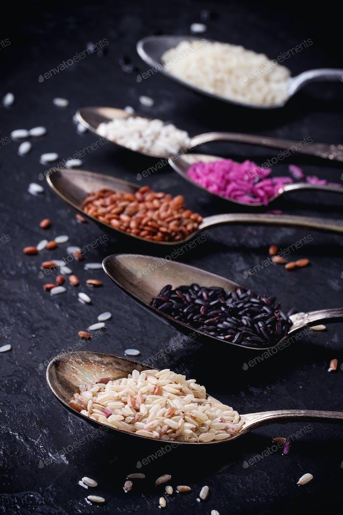 Set von ungewöhnlichen Reis