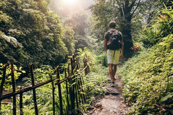 Junger Mann Wandern in den Wald