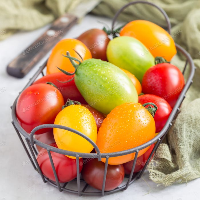 Small colorful cherry tomatoes in metal basket, square format