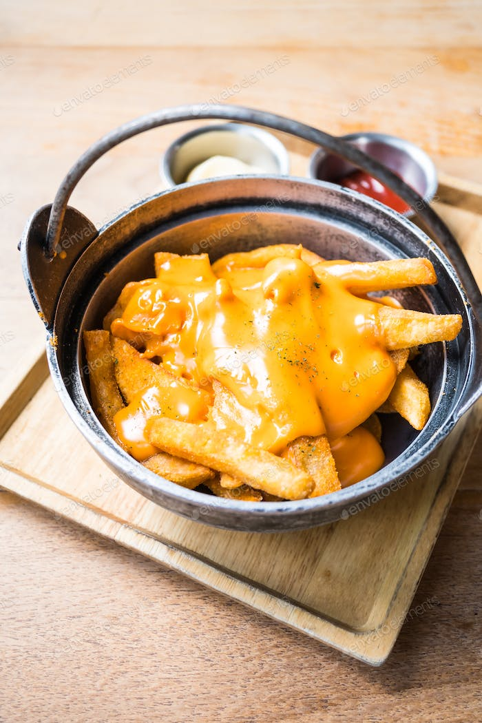 French fries with cheese on top