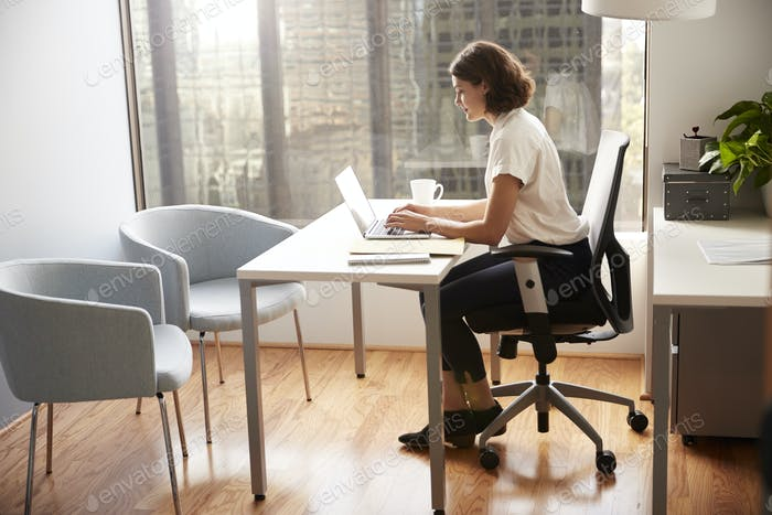 Businesswoman Sitting At Desk Working On Laptop In Modern Office