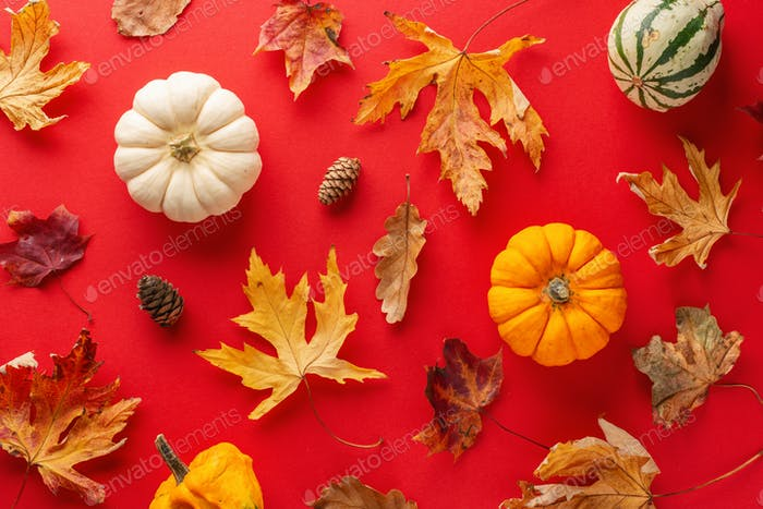 Herbst-Arrangement mit Blättern und Kürbis