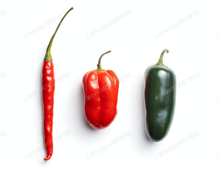 Jalapeno, habanero and chili peppers.