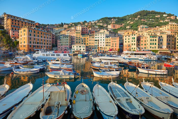 Camogli typical village with colorful houses and small harbor, Italy