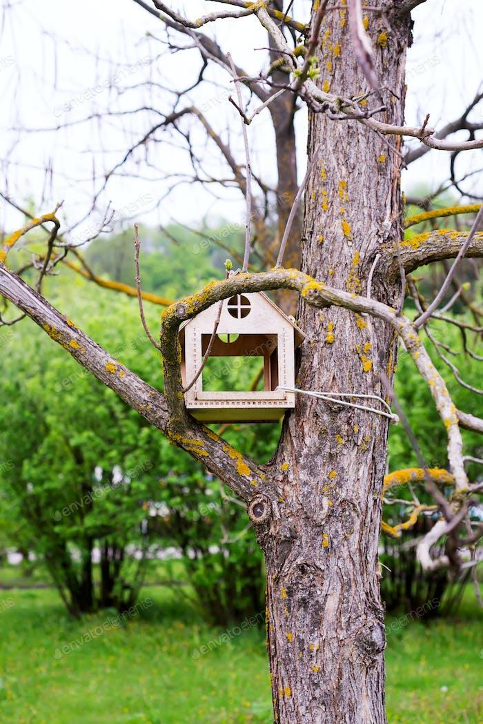 Vertikale Stamm von alten trockenen Baum mit handgefertigtem Holz Vogelhaus auf einem grünen verschwommenen Hintergrund von