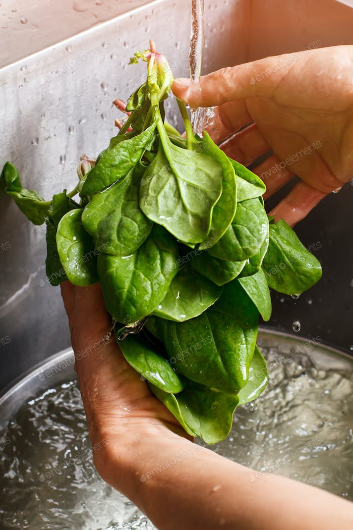Man's hands washing spinach.