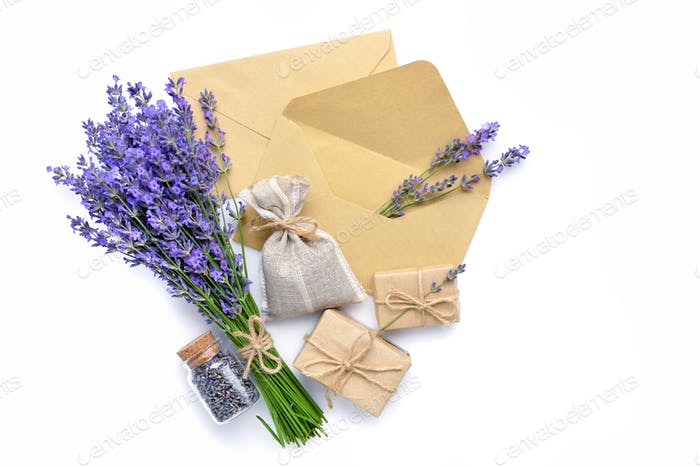 Fresh and dried lavender flowers, sachet and envelopes on white