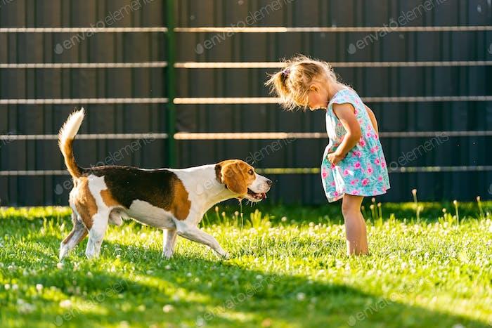 Baby Mädchen stehend mit Beagle Hund im Garten im Sommer Tag. Haustier mit Kindern Konzept