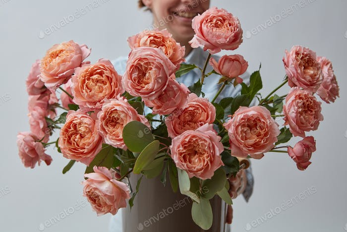 Beautiful pink roses, hold a woman in the hands on a gray background. Mothers Day