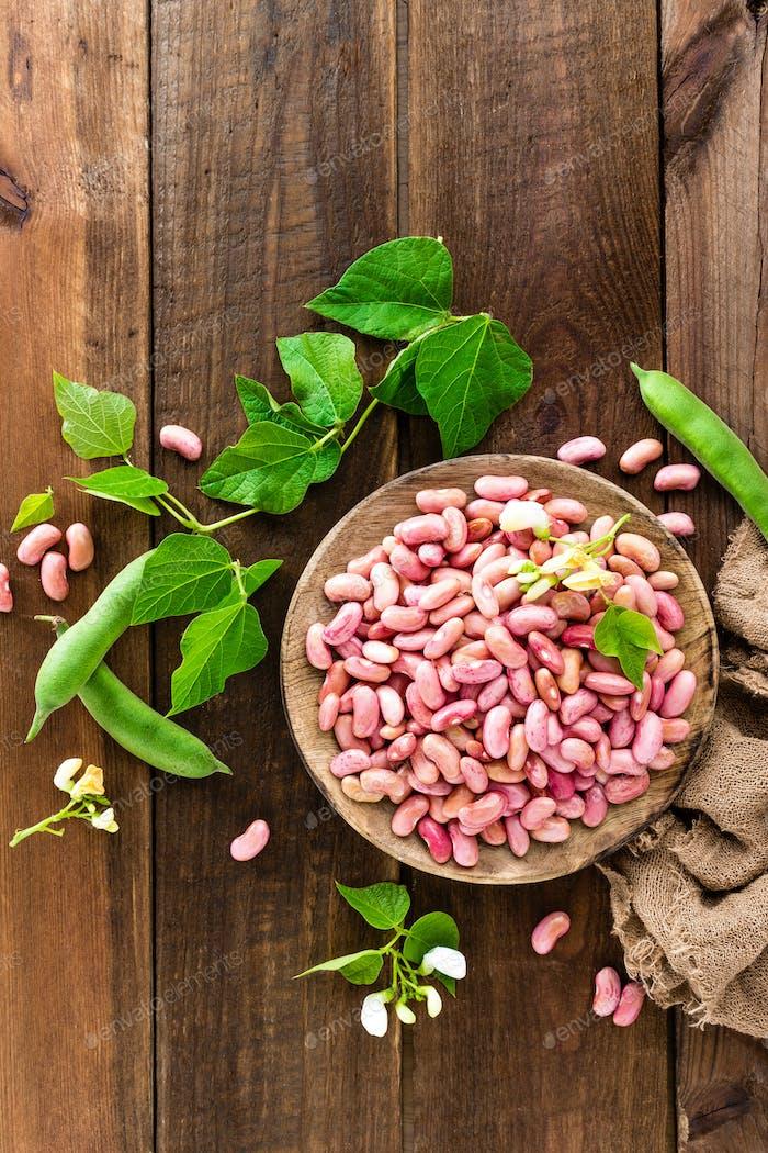 Red kidney beans. Haricot bean