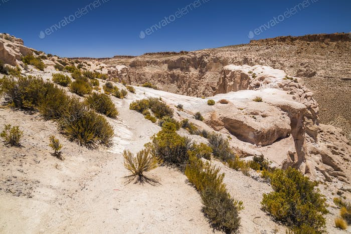 Canyon in the desert in Altiplano, Bolivia. South America