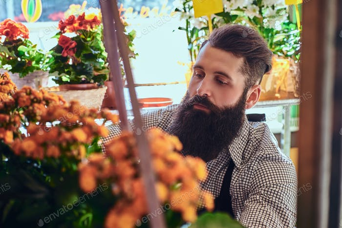 Professionelle männliche Blumenhändler im Blumenladen