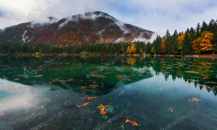 Autumn leaves in the Fusine lake in Italy