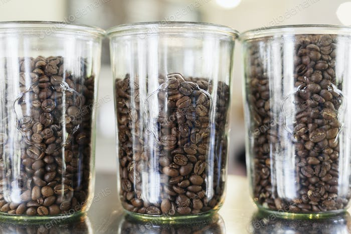 Roasted coffee beans in jars at cafe counter