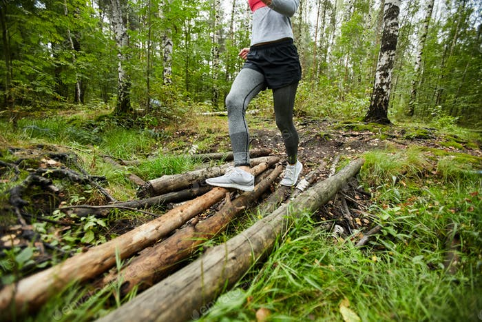 Training on logs