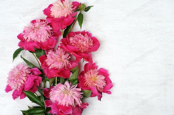 floral arrangement of peonies