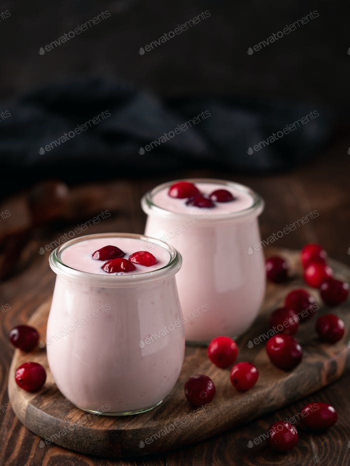 Yogurt with cranberry, copy space, vertical
