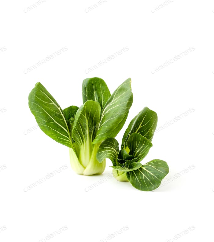 Fresh green salad Pak-choi (Chinese cabbage) on a clean white ba