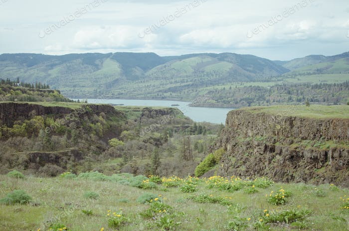 Columbia Gorge Landscape