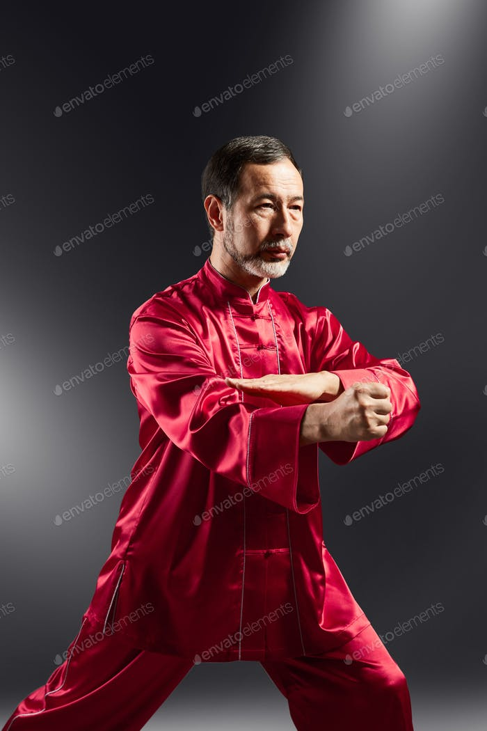 Senior master practicing qi qong taijiquan