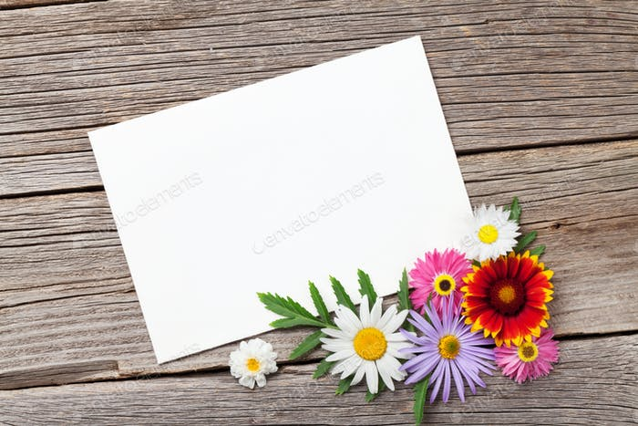 Blank greeting card and flowers photo by karandaev on envato elements blank greeting card and flowers m4hsunfo