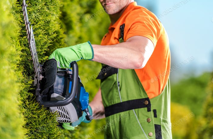 Hedge Trimmer Garden Work