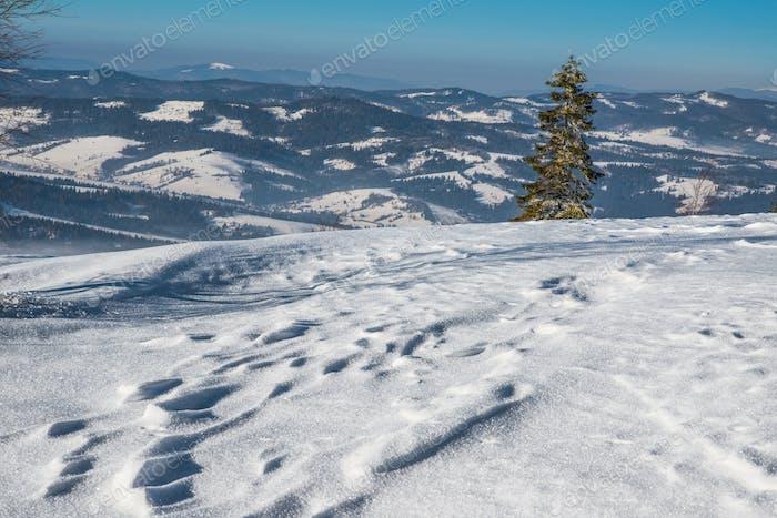 Beautiful winter panorama of the hills