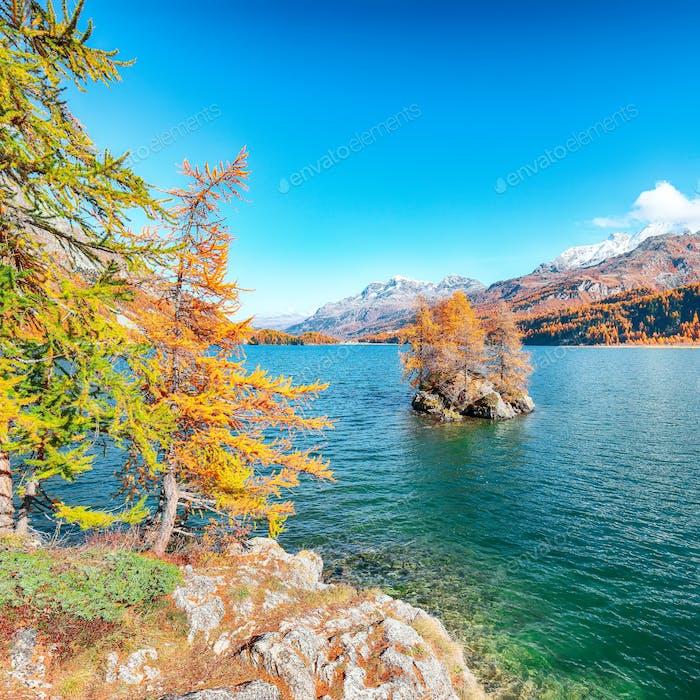 Malerischer Blick auf den Silser See (Silsersee) mit kleinen Inseln